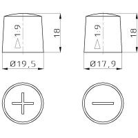 Batterieklemmen aus Messing Komplett für Plus und Minus Pol Standard 03988