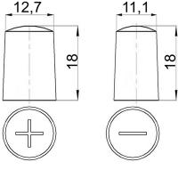 Batterieklemmen messing für Asiatische Batterien mit Dünpol 03926